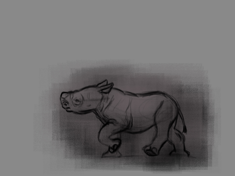 rhino life sketches